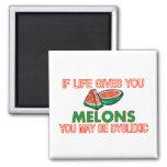 Melon Dyslexia Fridge Magnet