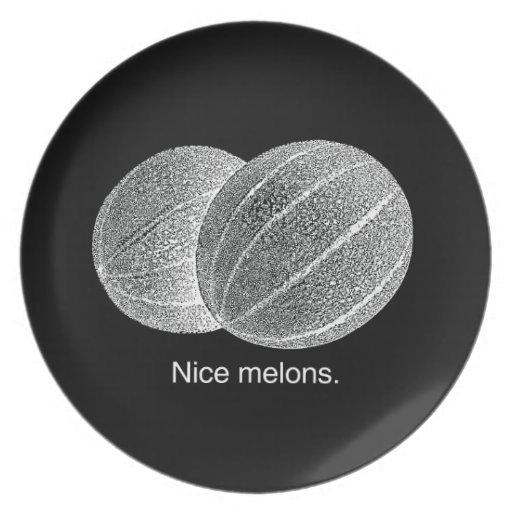 MELONES AGRADABLES - BLANCO - .PNG PLATOS