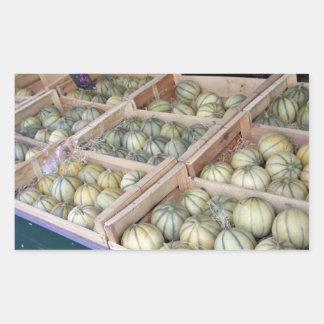 Melones de Charentais exhibidos en colmado Pegatina Rectangular
