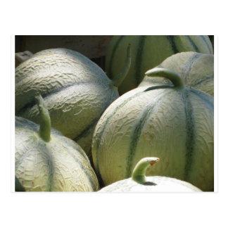 Melones Tarjetas Postales
