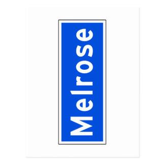 Melrose Avenue, Los Angeles, CA Street Sign Postcard