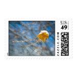 """""""Melt Me"""" Postage Stamps"""