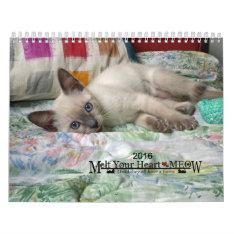 Melt Your Heart - Meow 2016 Kitten Calendar at Zazzle