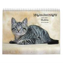 Melt Your Heart Meow Hubble 2019 Calendar
