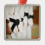 Members of a Judo Dojo Lined Up Ornaments