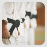 Members of a Judo Dojo Lined Up Square Stickers