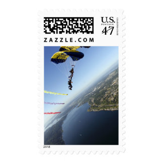 Members of the US Navy Parachute Team Postage