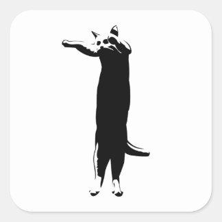 Meme largo del gato calcomanias cuadradas