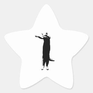 Meme largo del gato calcomanía forma de estrella personalizadas