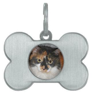 MeMeow Pet ID Tag