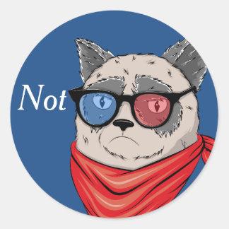 Memes-House- cat Classic Round Sticker
