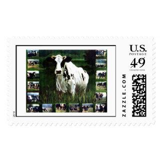 meMOOries Postage Stamps