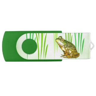 Memoria USB de princesa Charming Frog Swivel USB Memoria USB 2.0 Giratoria