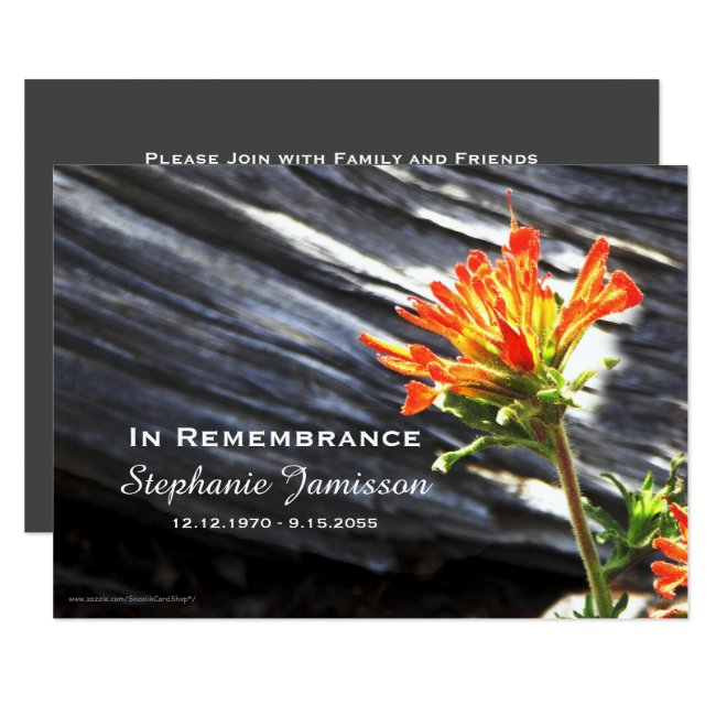 Memorial Service Invitation, Indian Paintbrush