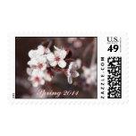 Memorias de la primavera sellos