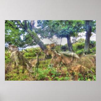 Memorias salvajes - una nueva arboleda del bosque, póster