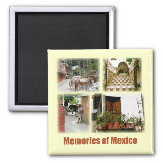 Memories of Mexico Magnet