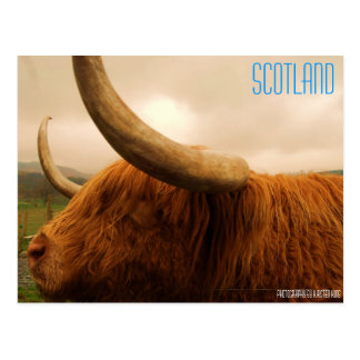 memory 2 216, SCOTLAND, Photography by Kirsten ... Postcards