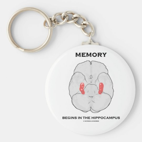 Memory Begins In The Hippocampus (Psychology) Keychain