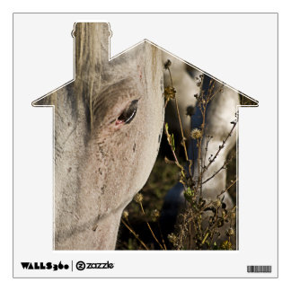 Memory Of Saddles Wall Decal