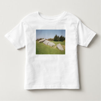 Men-er-Hroech'h Toddler T-shirt