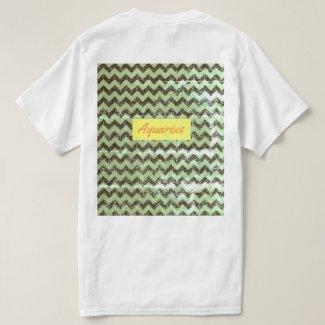 Men's Aquarius T-Shirt XL