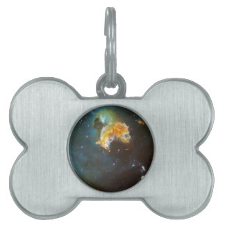 Menagerie of Stars Pet Name Tags