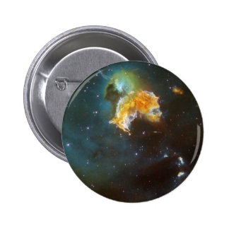 Menagerie of Stars Pinback Button