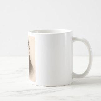 mendel mugs