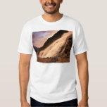 Mendenhall Glacier Falls T Shirt