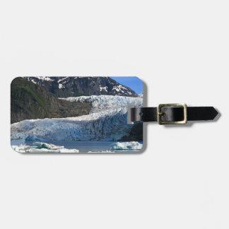 Mendenhall Glacier / Juneau Alaska Bag Tag