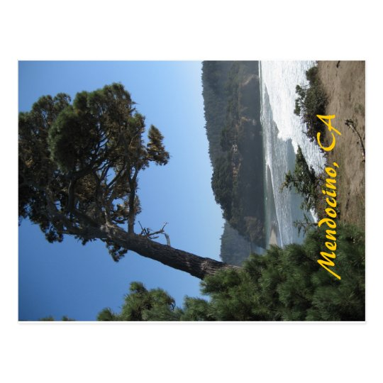 Mendocino, California Postcard