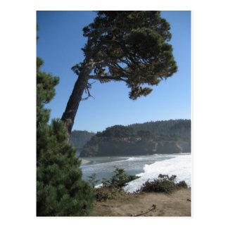 Mendocino, California Post Cards
