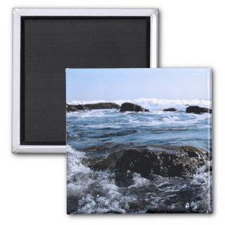 Mendocino Coast Fridge Magnet
