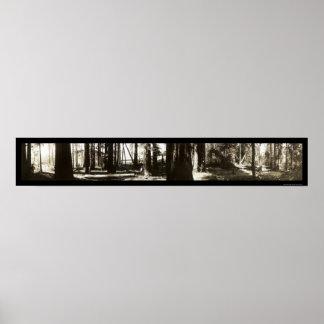 Mendocino, foto 1911. de los leñadores de las seco impresiones