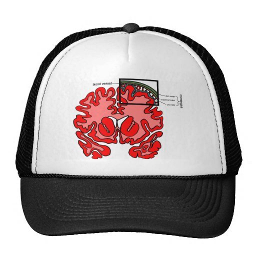 Meninges Trucker Hat