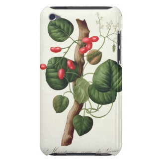 Menispermum from 'Phytographie Medicale' by Joseph Case-Mate iPod Touch Case