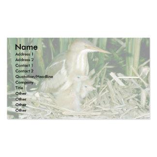 Menos agua madre de salmuera (femenina) con los jó tarjetas de visita