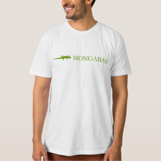 Men's American Apparel Organic T-Shirt