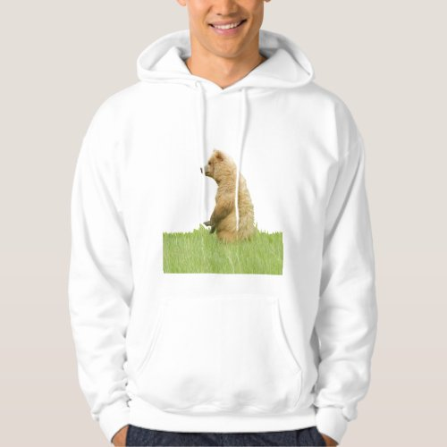 Mens Basic Hooded Sweatshirt w grizzly bears