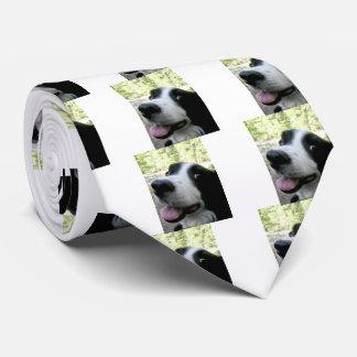 Men's Border Collie Silk Tie