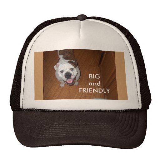 Mens' Cap Trucker Hat