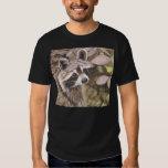 Mens  Raccoon Basic Dark T-Shirt