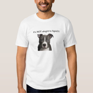 Men's T-shirt...It's NOT alright to fight!!!! T Shirt