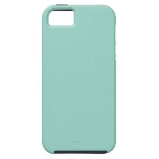 Menta del color sólido iPhone 5 fundas