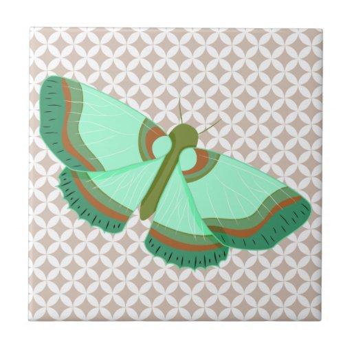 Menta/mariposa verde oliva/del Umber Azulejo