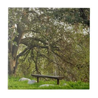 Mente reservada, tiempo reservado debajo de un árb azulejo cuadrado pequeño