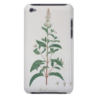 Mentha Piperita from 'Phytographie Medicale' by Jo Barely There iPod Cover