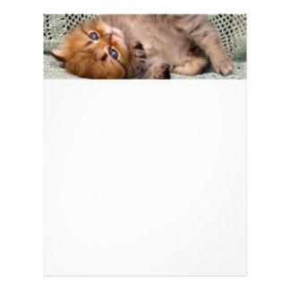 Mentira linda del gatito membrete a diseño