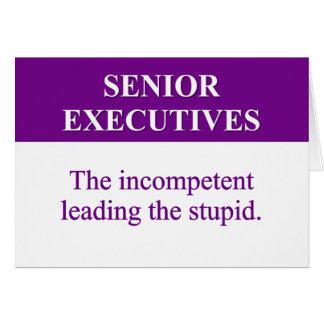 Mentoring Role of Senior Executives 2 Card